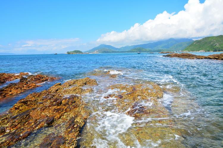 (1)五一假期露营┃5月1-2日惠州原生态海滩露营+生蚝海鲜大餐-户外活动图-驼铃网
