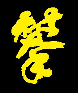 2017第十届阳朔攀岩节