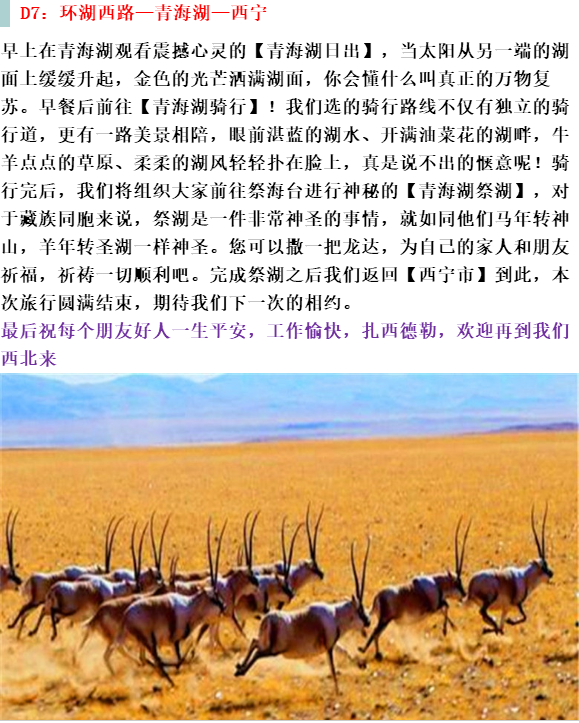 (15)独家线路 探寻可可西里—水上雅丹 茶卡盐湖 青海湖7天之旅-户外活动图-驼铃网