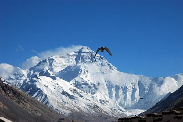 珠峰、羊湖、日喀则、扎寺|4天3夜