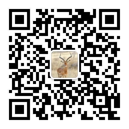 (9)五一假期露营┃5月1-2日惠州原生态海滩露营+生蚝海鲜大餐-户外活动图-驼铃网