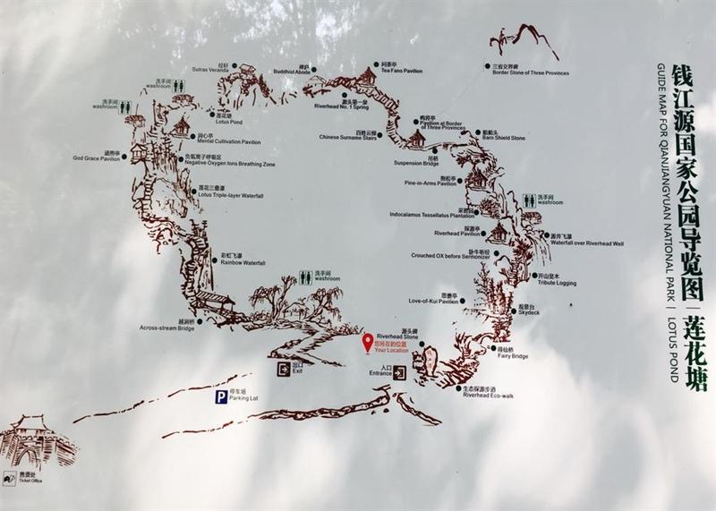 这就是钱江源国家森林公园莲花塘的导览图,可以具体看到里面的各个