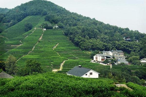 9月16日周六爬山毅行活动:路线如下 九溪-五云山-十里锒铛-龙井-九溪十八涧