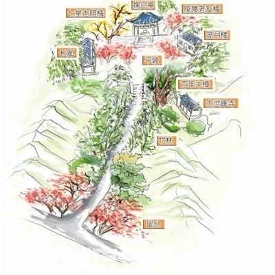 本周日灵隐寺北高峰植物园爬山赏梅交友报名后请扫码进报名群