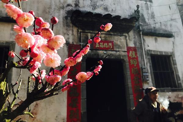 「节后赏花」2.24  穿越花海,在卖花渔村,只卖花、不卖鱼!