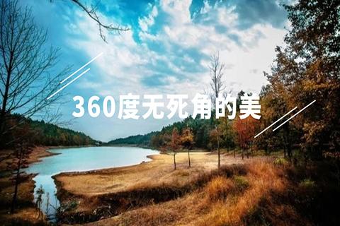 【长乐林场】11.10 惊艳!长乐林场的秋天:一片被颜料浸染的森林!