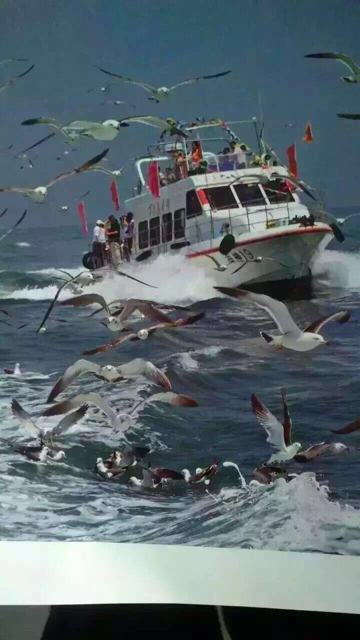 神奇长岛深度游,蓬莱仙境海市蜃楼间看八仙过海,万鸟飞翔,拍片吃海鲜.