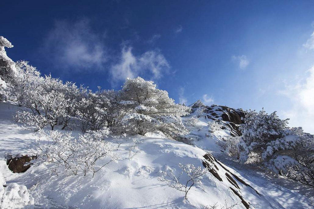 其实冬天的黄山,风景清俊,意境高远,黄山的雪景被人们称为黄山第五绝.