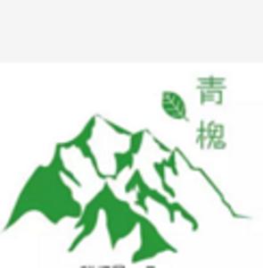 南昌市青槐科技股份有限公司