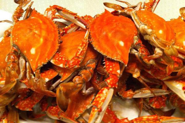 【都市悠客】体验出海打渔的生活,海就在阳光、沙滩和餐桌上的海鲜里!!