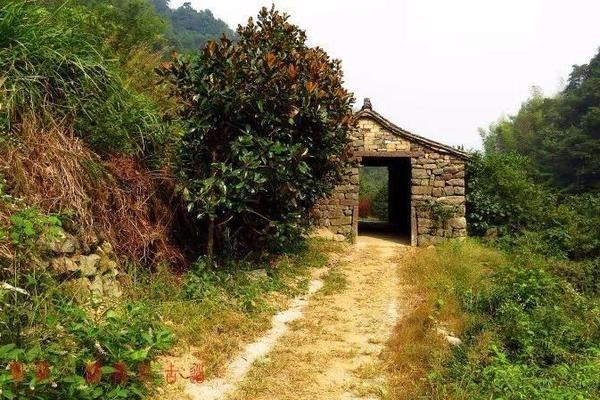 [醉在深秋]11.24唐诗之路栖霞坑古道,乐享初秋赏枫叶走心之旅