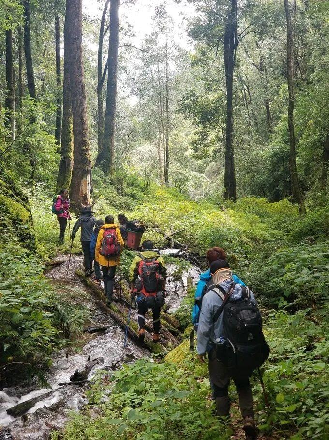 自在山野 云行金沙 傈僳秘境巴拉神山徒步、露营三日