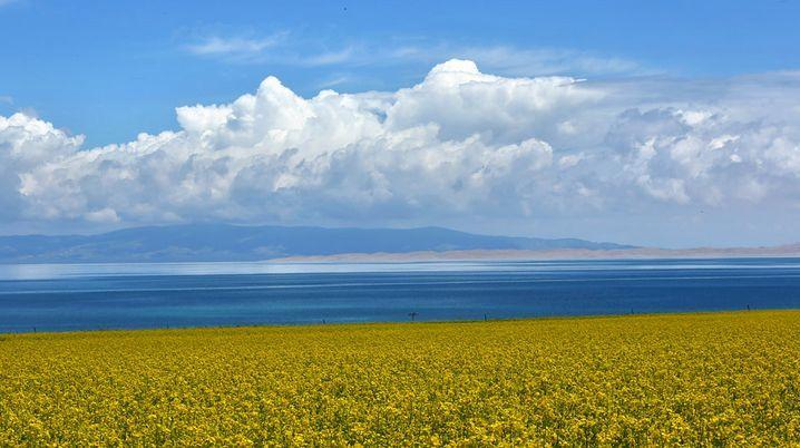 青海湖环湖,门源油菜花,卓尔山,祁连山,茶卡盐湖,摄影,深度游