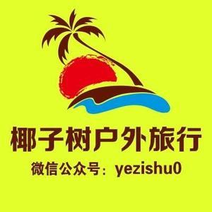 椰子树旅行