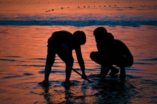 【领袖户外】檀头山岛激情一夏,沙滩漫步嬉水,捉螃蟹捡贝壳,海岛篝火晚会(安排快艇出行)